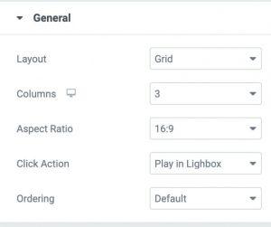 Elementor video gallery general options