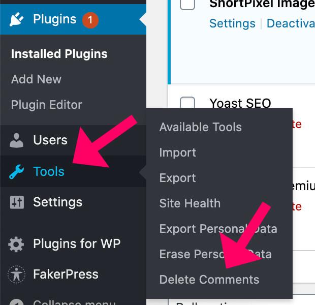 Access the delete comments plugin screen