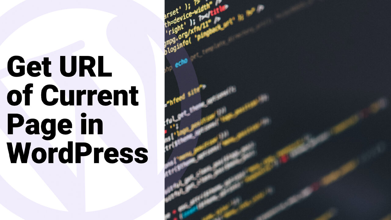 How to Get URL of Current Page in WordPress