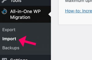 All in one WP Migration import