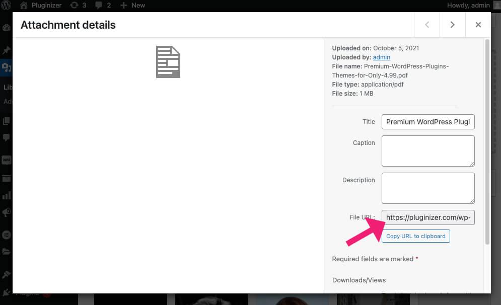 PDF file path