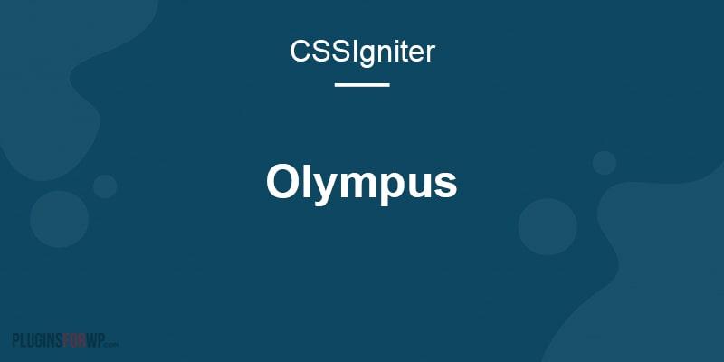 Olympus Inn