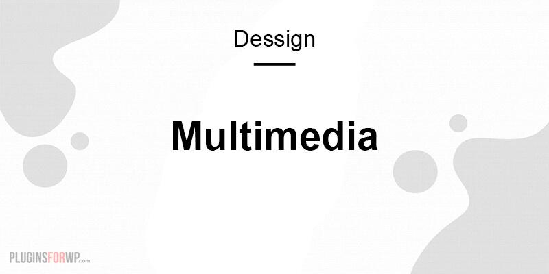 Multimedia Responsive WordPress Theme