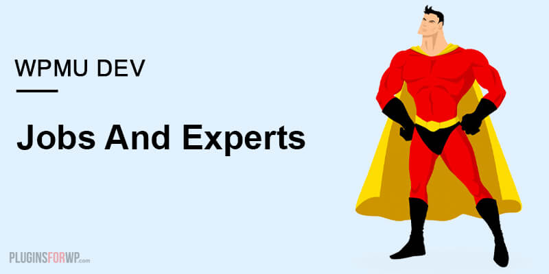 Jobs and Experts
