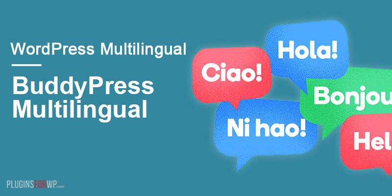 BuddyPress Multilingual